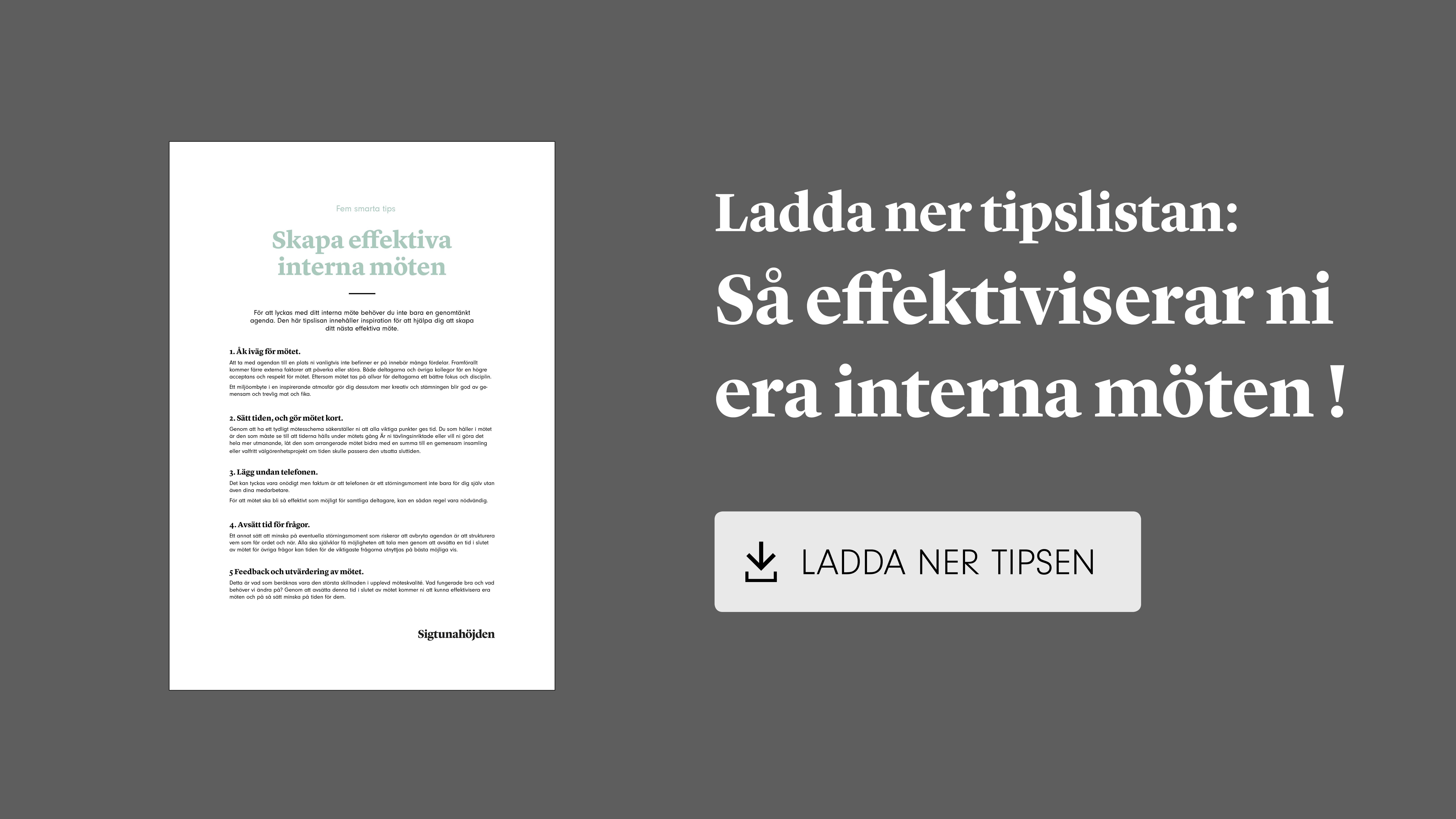 CTA - effektivisera interna möten - download banner-