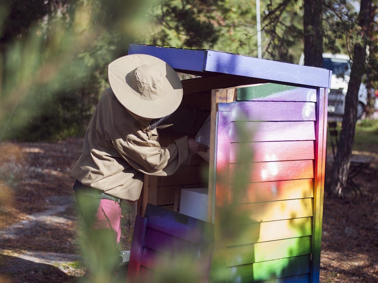 En av våra bikupor som främjar den biologiska mångfalden