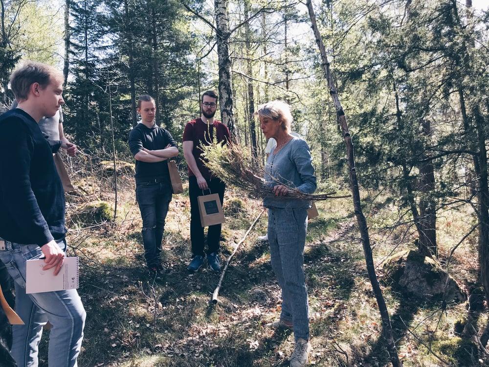 Lisen i skogen