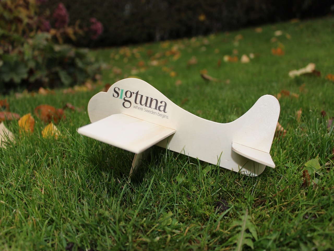 modellflygplan.jpg